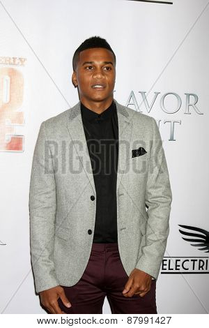 LOS ANGELES - FEB 13:  Cory Hardrict at the