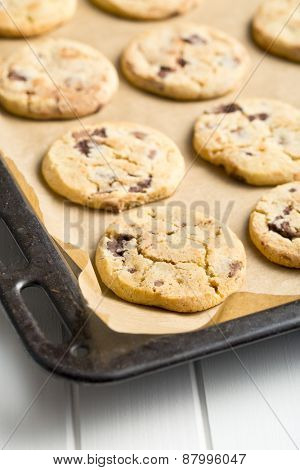 chocolate cookies on kitchen table
