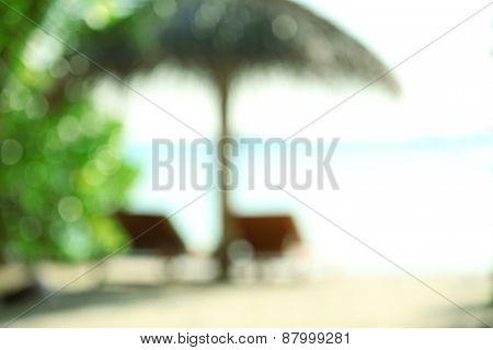 Sunbeds on beautiful beach in resort, blurred texture