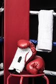 picture of boxing ring  - Boxing gloves and towel in boxing ring corner - JPG