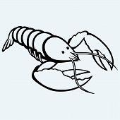 stock photo of craw  - Crayfish sketch image isolated on blue background - JPG