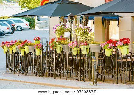 Flower Pots On Fence