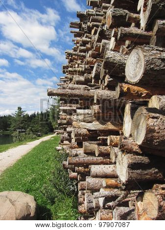 Pile Of Firewood With Forest And Sky Background . Fie Allo Scilliar, South Tyrol, Italy