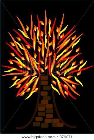 Flaming Tree Or Burning Tree