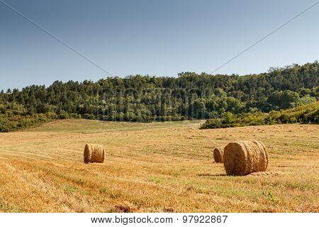 Hay Bale On A Rural Field