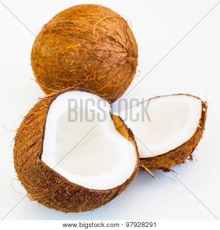Fresh Close Up Parts Of Coconut And Whole Fruit Behind On The White Background