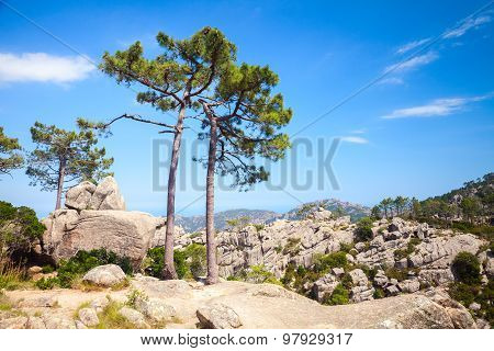 Nature Of Corsica Island, Mountain Landscape