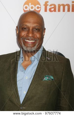 , LOS ANGELES - AUG 4:  James Pickens Jr at the ABC TCA Summer Press Tour 2015 Party at the Beverly Hilton Hotel on August 4, 2015 in Beverly Hills, CA