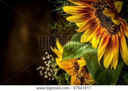 Flowers Yellow And Red Sunflower