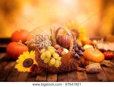 Autumn harvest - fresh autumn fruits in the basket