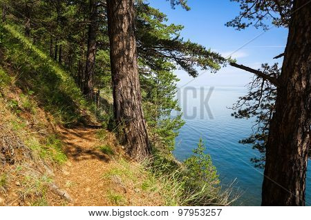 Baikal Wild Trail