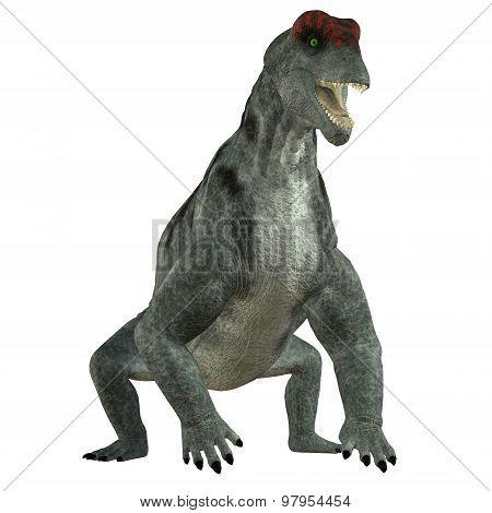 Moschops Herbivore Dinosaur