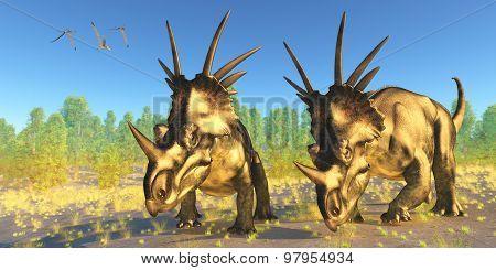 Styracosaurus Dinosaurs