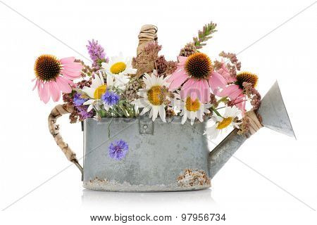 watering can with wildflowers