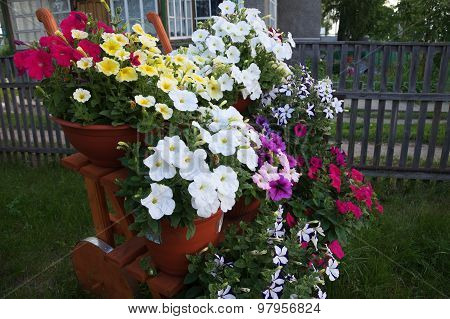 Stair Decoration Flower Garden