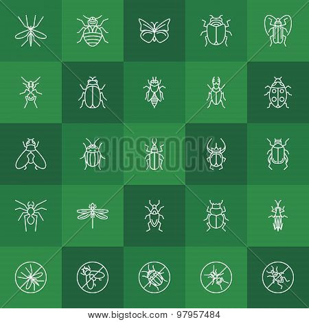 Insects line icons