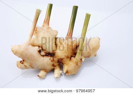 bunch of ginger root on the white background