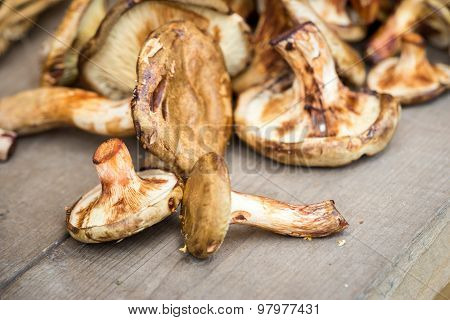 Coral Milky Cap Mushrooms Close Up On A Wooden Table