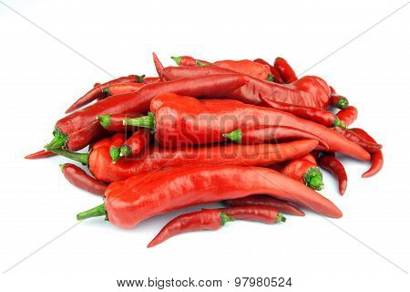 Large And Small Chilli Peppers On White Background