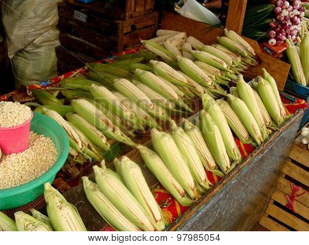 Fresh Corncobs On Mexican Market