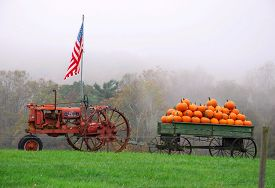 pic of wagon  - Vintage tractor - JPG