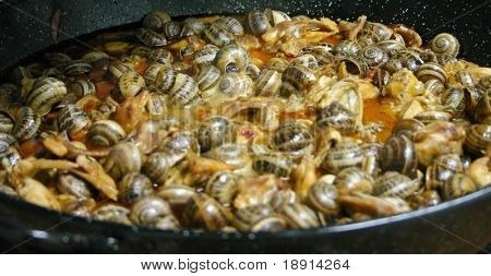 typical spanish dish caracoles (snails), paella style