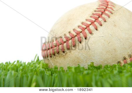 Softball In Grass Close Up