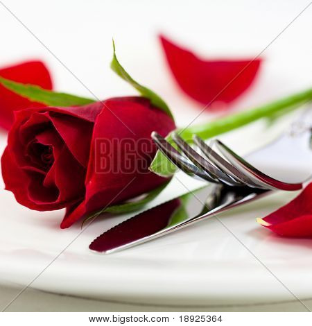 Closeup of red rose and cutlery on white plate