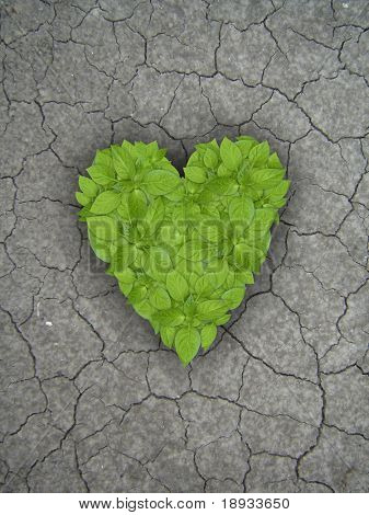 Heart on cracked soil background