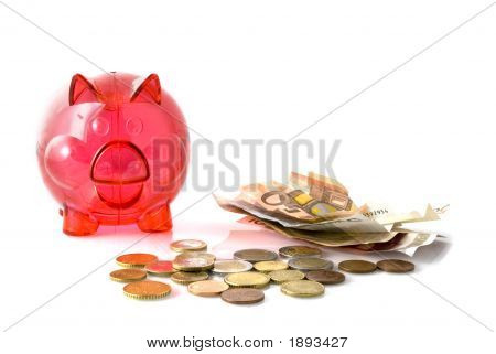 Red Pig For Saving Money