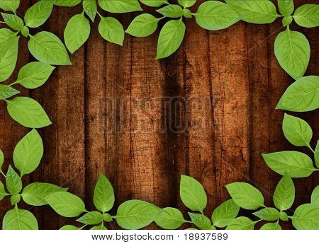 Old wooden background with green floral frame