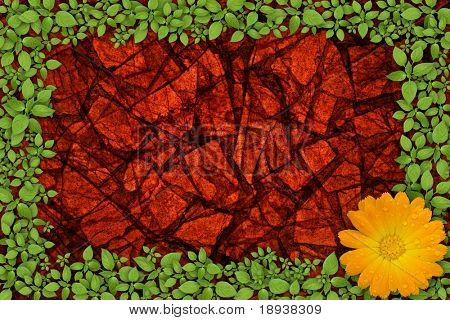 stone wall surface with green plant frame