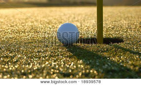 close golf shot on a dewy morning
