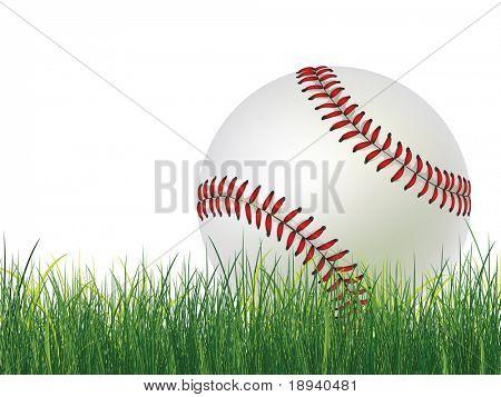 Baseball Ball on Grass. 2D Graphics. Computer Design.