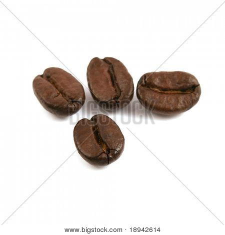 coffee beans close up isolated in studio