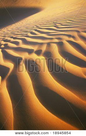 Ripples of desert dunes, sahara, Tunisia, Africa.