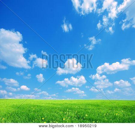 Natur-Hintergrund. Klare Frühjahr Sommer Landschaft mit grünem Gras und blauen Himmel.