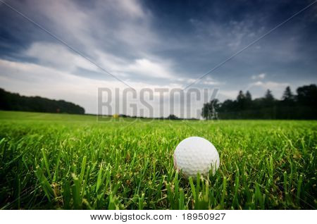 Golf ball on the field. Green grass, cloudy sky.