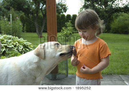 Baby, Hund und Eis