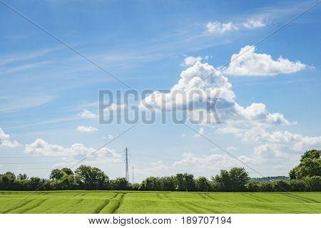 Green Fields In A Rural Countryside Landscape