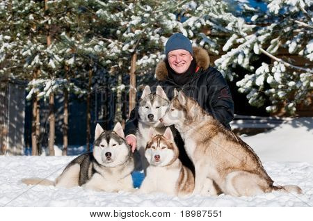 Breeder man and Four siberian husky dog lying on snow at sunny winter day