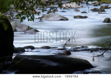 Little Creek With Many Stones And Foliage