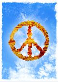 picture of woodstock  - Peace symbol in the sky - JPG