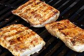 picture of mahi  - Mahi on the grill at a cookout - JPG