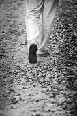 picture of walking away  - Walking through the autumn leaves - JPG