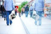 stock photo of shopping center  - People in rush in a modern shopping mall - JPG