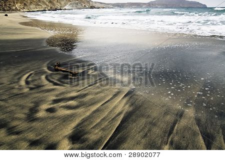 Driftwood in the sand in a volcanic beach located in Almeria, Spain