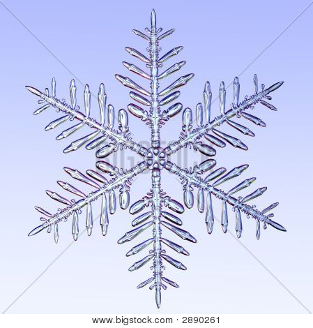 Microscopic Snowflake