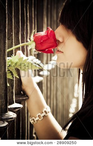 Young anonymous woman smelling a red rose behind metal fence.