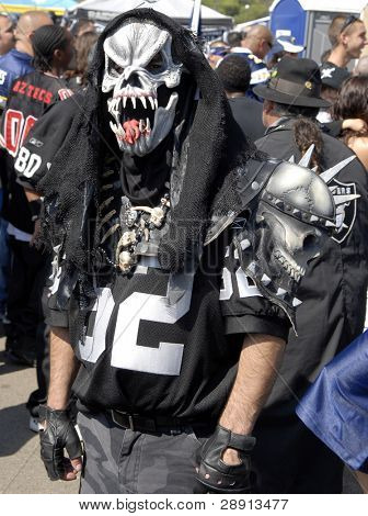 Raider Fan - need I say more?